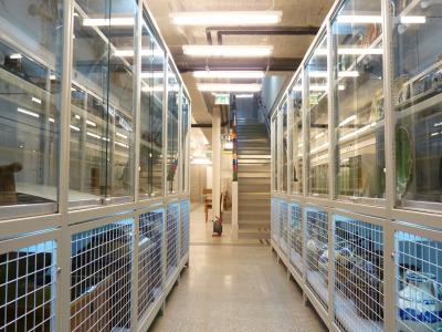 Múzeum állványrendszer, polcrendszer